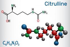 Citrulline Modell