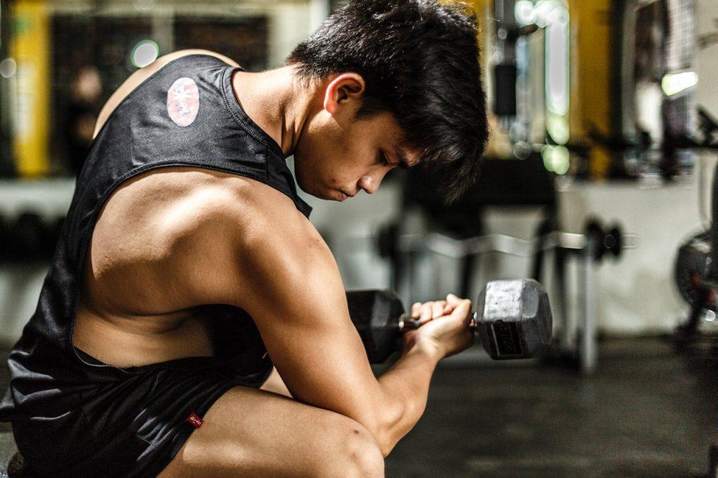 Creatin für den Muskelaufbau